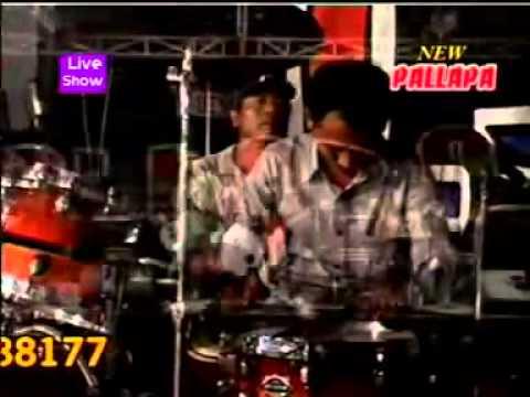 malapetaka new pallapa live in pagak