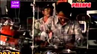 Download lagu malapetaka new pallapa live in pagak