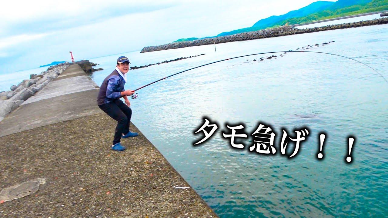 堤防手前の浅瀬からありえないサイズの魚がかかり大パニック...
