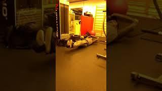 Gambar cover Vücut geliştirme, bodybuilding, karın kaslarını güçlendirmenin yolları