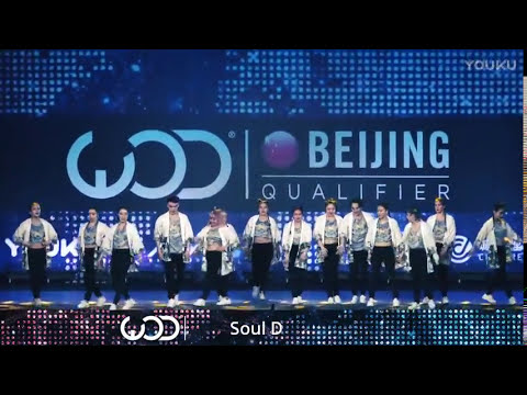 WOD 2017 China, Beijing 中国 (World of Dance Beijing),  Soul D team (My team)