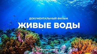 Живые воды. Разумный замысел в океанах Земли. Документальный фильм Мифы эволюции
