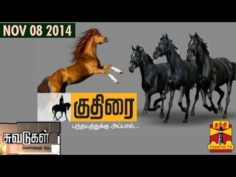 Suvadugal - A documentary on horse riding in Tamil Nadu(08/11/2014) - Thanthi TV