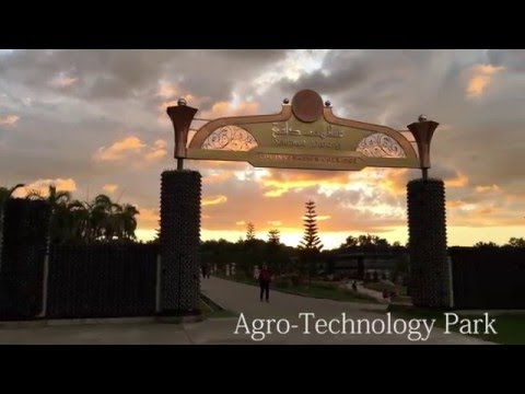 Agro-Technology Park Brunei, by Hasif Hanafi