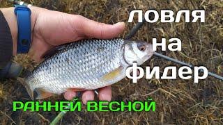 Рыбалка на фидер ранней весной Ловля плотвы и сопы на реке