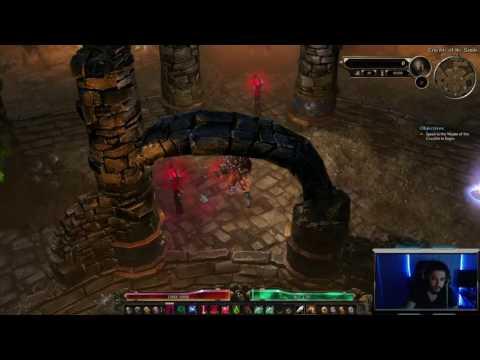 Grim Dawn Crucible Character Guide | Vitality Conjurer