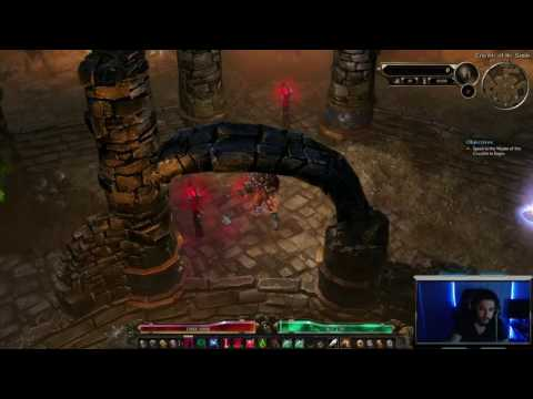 Grim Dawn Crucible Character Guide  Vitality Conjurer