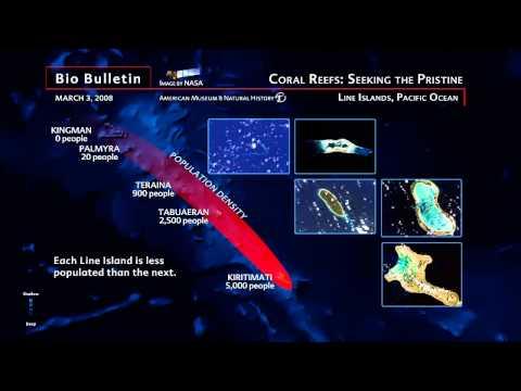 Science Bulletins: Coral Reefs: Seeking in the Pristine
