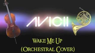 Avicii - Wake Me Up (Acoustic/Orchestral Cover)