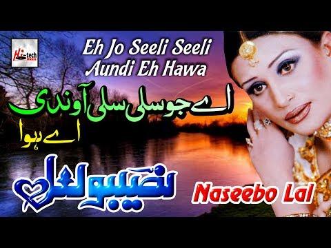 Eh Jo Seeli Seeli - Best of Naseebo Lal - HI-TECH MUSIC