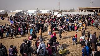 أخبار عربية - نزوح عشرات الآلاف من #الموصل وسط ظروف قاسية