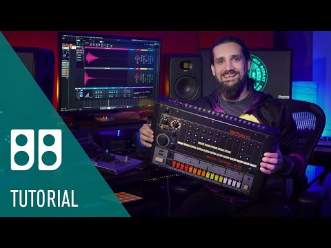 Take Control of Your 808 Samples | Backbone Drum Re Synthesizer