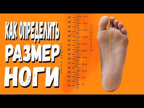 Как в домашних условиях узнать размер ноги