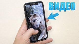 як зробити відео заставку на iphone