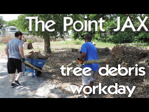 THE POINTJAX |tree debris removal workday