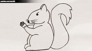 Como dibujar una ardilla