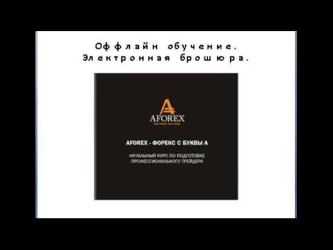 Обучение Форекс: видео уроки для чайников. Форекс обучение