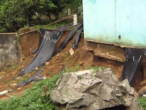 15 07 01 Damage to Chimpanzee Area Abidjan Zoo