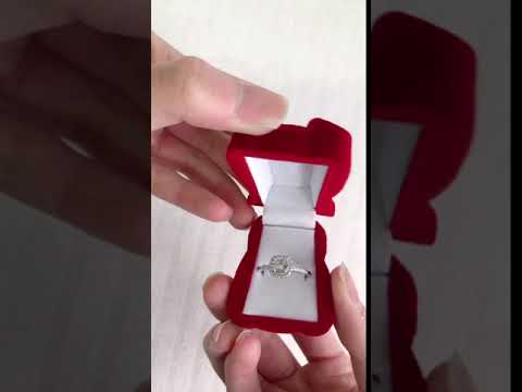 Red Bear ring Box