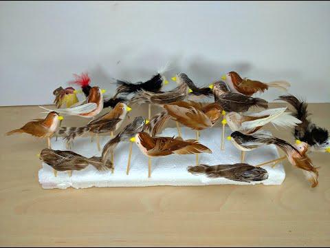 Как сделать птичку из перьев своими руками мастер класс