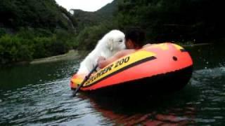 白熊ボートに乗る!