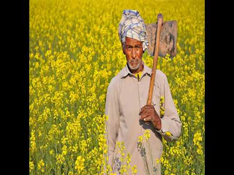 Video - किसान की शर्त - अवसर मत गंवाईये वह अवसर दुबारा नहीं मिलेगा