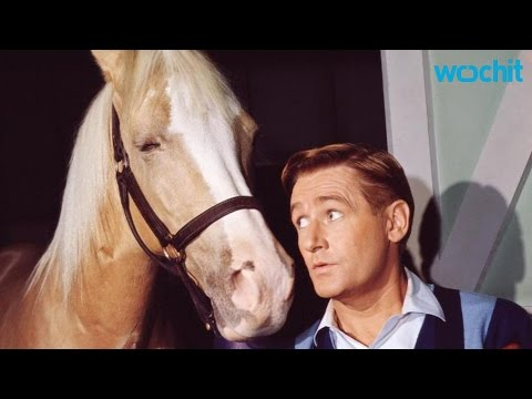 'Mr. Ed,' Star Alan Young, Dies At 96
