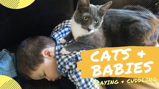 Aww Funny Babies & Cats Playing, Cuddling, Hugging and Fighting