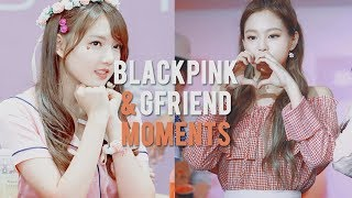 Download Video blackpink and gfriend moments MP3 3GP MP4