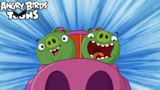 Angry Birds Toons 3 Ep. 19 Sneak Peek - ''Short and Special''