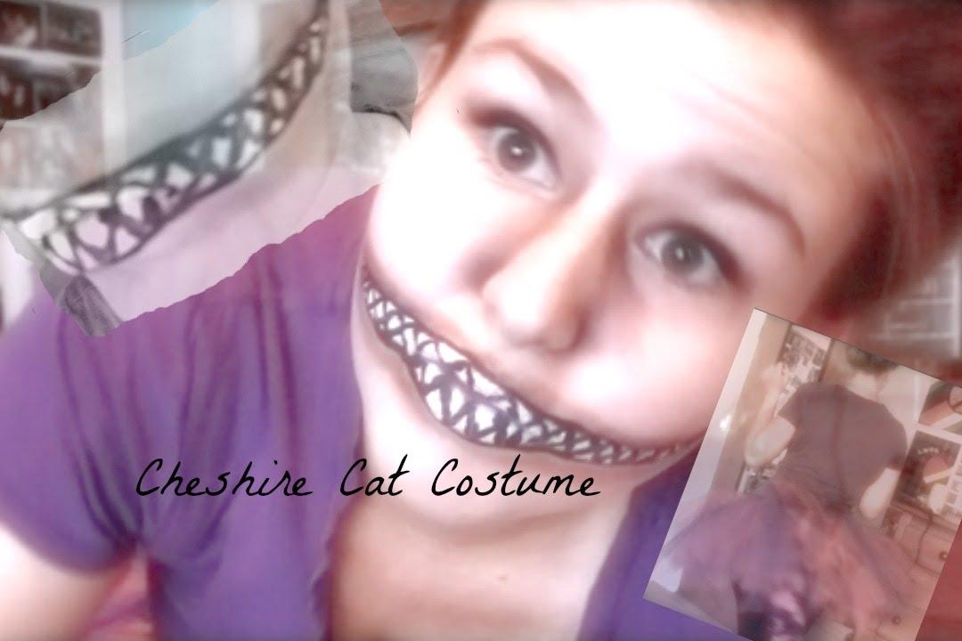 Diy cheshire cat costume youtube diy cheshire cat costume solutioingenieria Gallery
