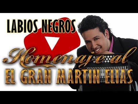 Labios Negros Hermoso tema del gran martin elias
