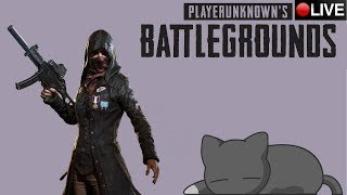 (21+)►Playerunknown's Battlegrounds◄ охотники за грузами Duo FPP PTS