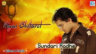 Hiyar Bhitarot | Assamese Old Song | Pranita Baishya Lokgeet | Zubeen | Tokari Song | Sundari Radhe
