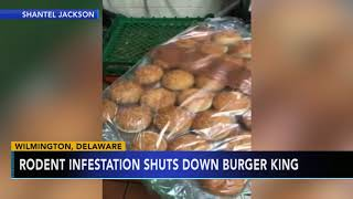 Burger King in Delaware reopens after video of rodents on hamburger buns