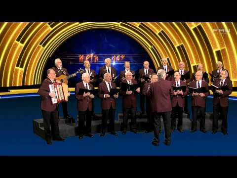 Mein Chor - Männerchor Walsrode - Edelwild