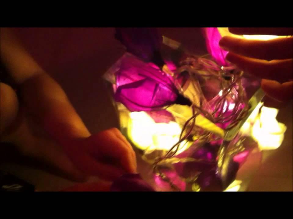 info for 1a2df b0cec Blaze On Fairy Lights