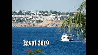 Egypt 2019.Шарм-эль Шейх.