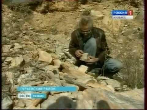 Золото Гурьевского района