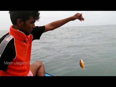 DEEP SEA FISHING//AMAZING FISHING SKILLS