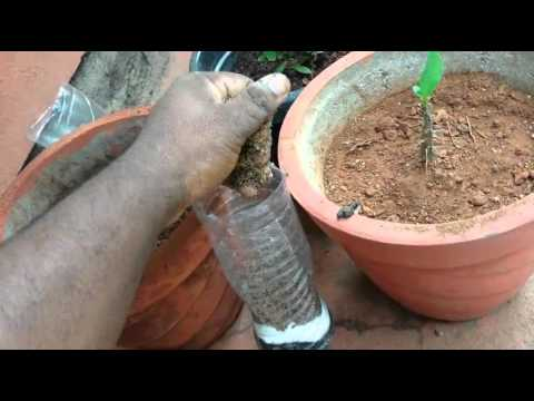 How to make a homemade water filter system YouTube