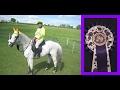 Merlin Le Grande - Video 73 (Braughing EBA Ride - Part 1)