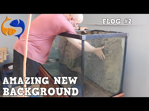 Incredible New Background For Massive Aquarium And New Fish Room Walk Through!