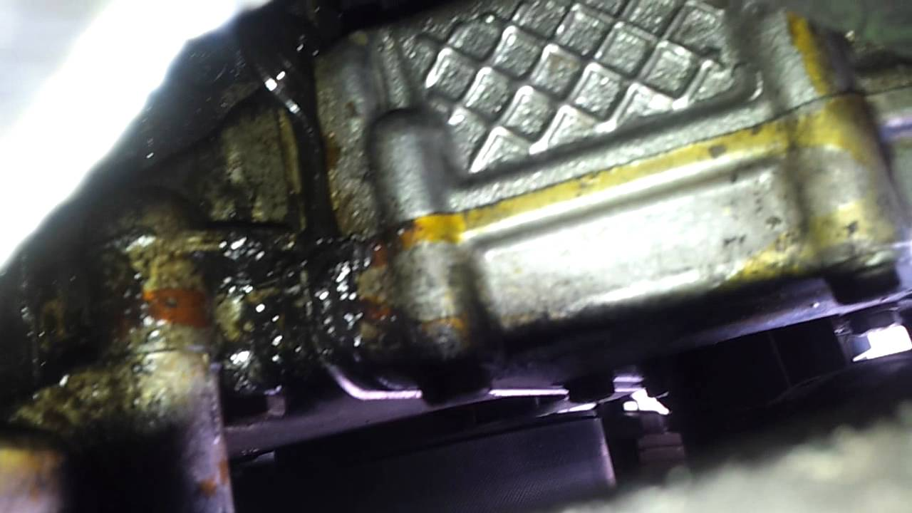 BMW E46 318i Oil Leak 2001 128k - YouTube