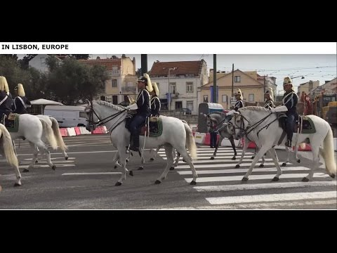 Amazing horse parade in the city of Lisbon