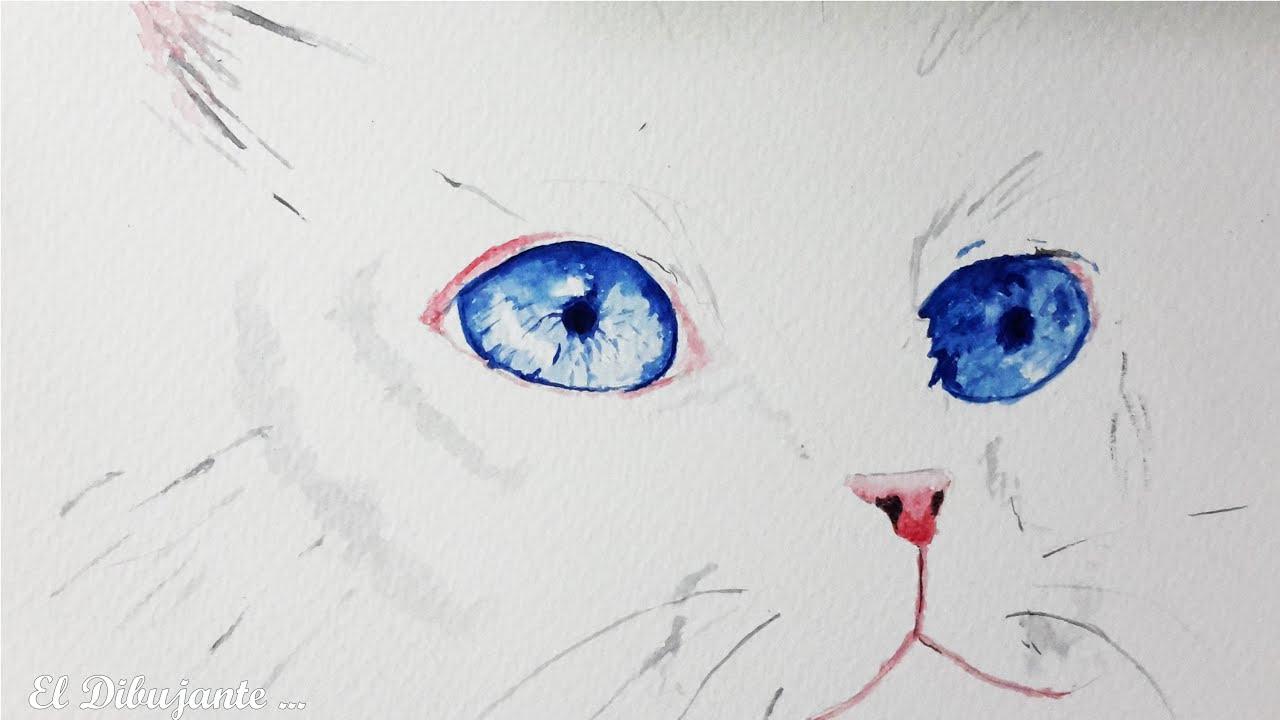 Como pintar un gato con acuarela el dibujante youtube - Dibujos de gatos pintados ...