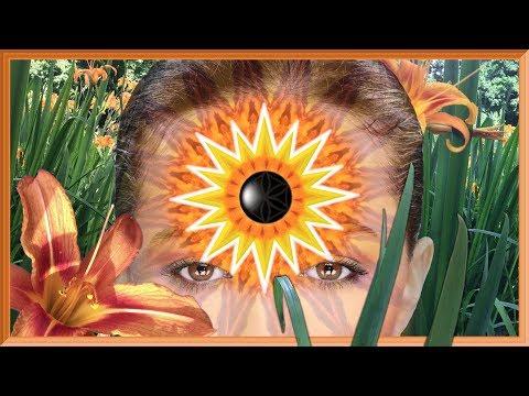 Instant Third Eye Stimulation II • M1• (Warning: Very Powerful!)