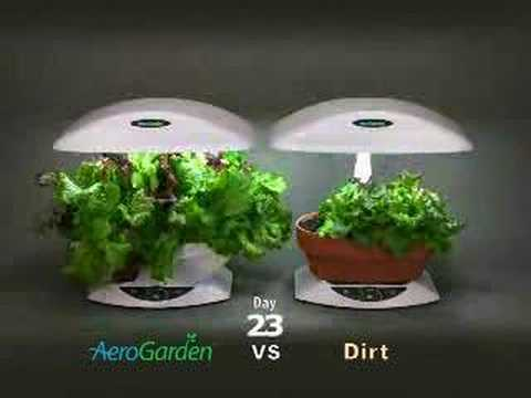 Aerogarden vs dirt youtube for Soil vs hydro