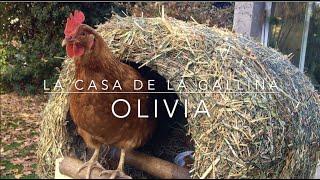La Casa de la Gallina Olivia -  Como Hacer una Casa para tu Gallina
