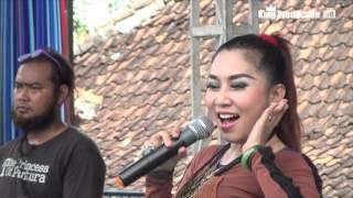 Video Mawar Ditangan Melati Dipelukan - Ayi Nirmala - Susy Arzetty Live Pegagan Lor download MP3, 3GP, MP4, WEBM, AVI, FLV Agustus 2018
